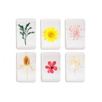 Cube Wildflowers  S
