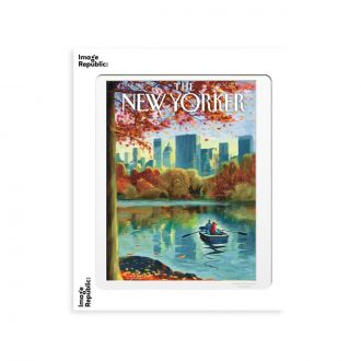 Affiche The NY Drooker Raw Boat In Central Park 30 x 40cm