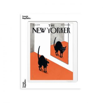Affiche The NY 158 Falconner Blk Cat Hall 30x40cm