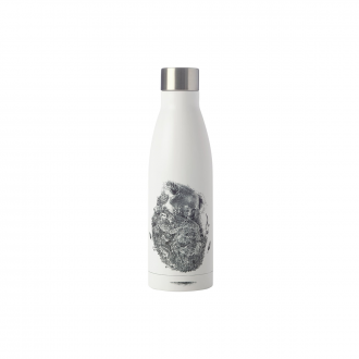 Bouteille isotherme Maxwell & Williams Marini 500ml Koala